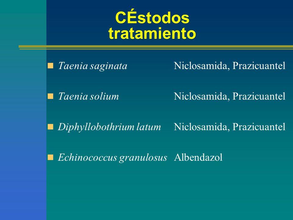 CÉstodos tratamiento Taenia saginata Taenia solium