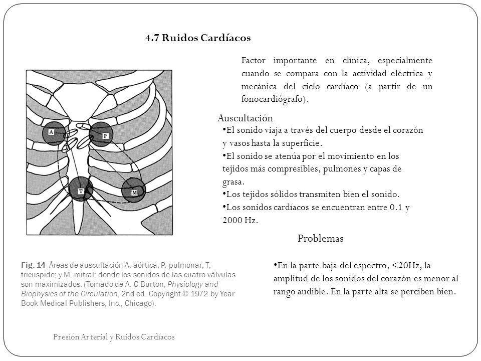 4.7 Ruidos Cardíacos Auscultación Problemas