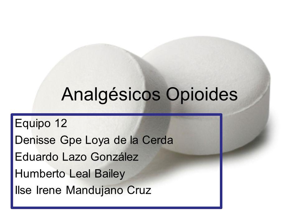 Analgésicos Opioides Equipo 12 Denisse Gpe Loya de la Cerda