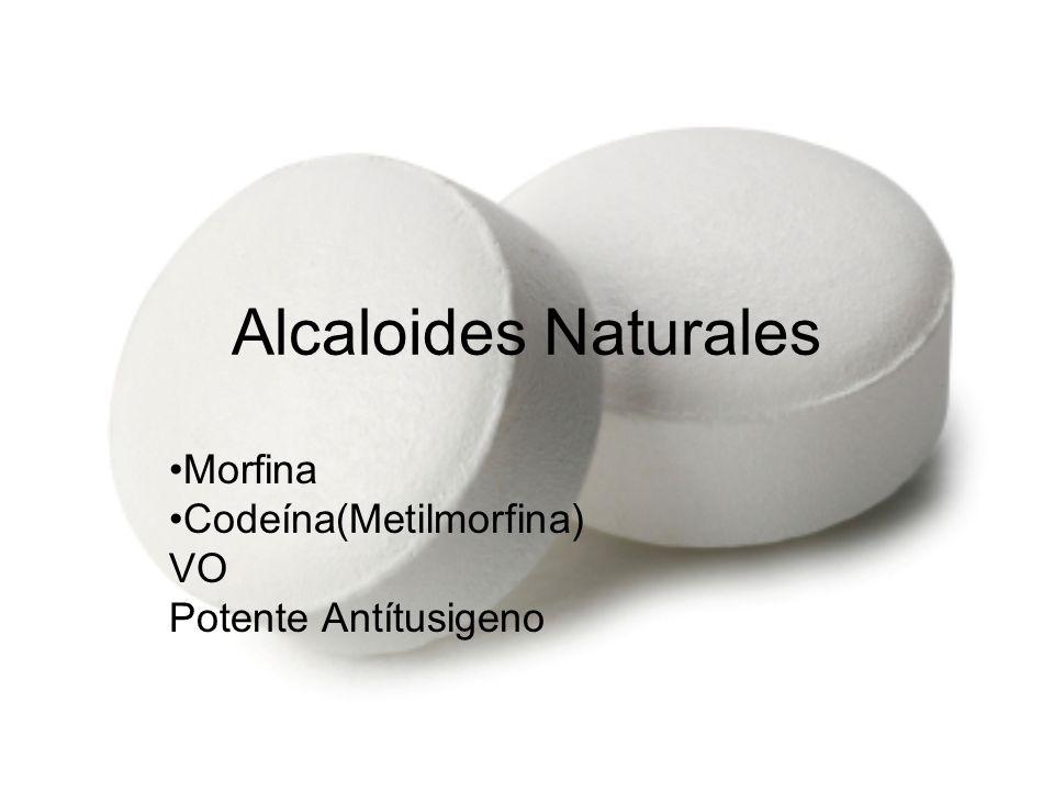 Morfina Codeína(Metilmorfina) VO Potente Antítusigeno
