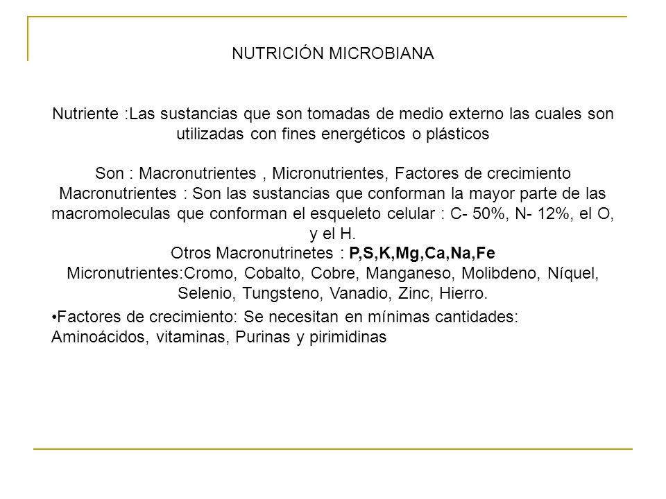 Son : Macronutrientes , Micronutrientes, Factores de crecimiento