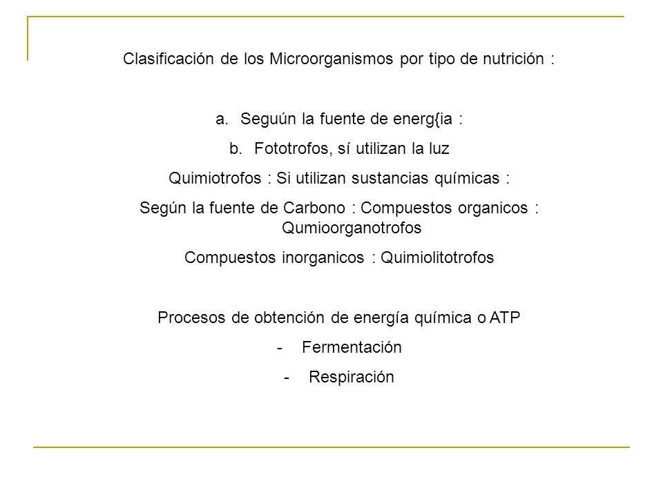 Clasificación de los Microorganismos por tipo de nutrición :