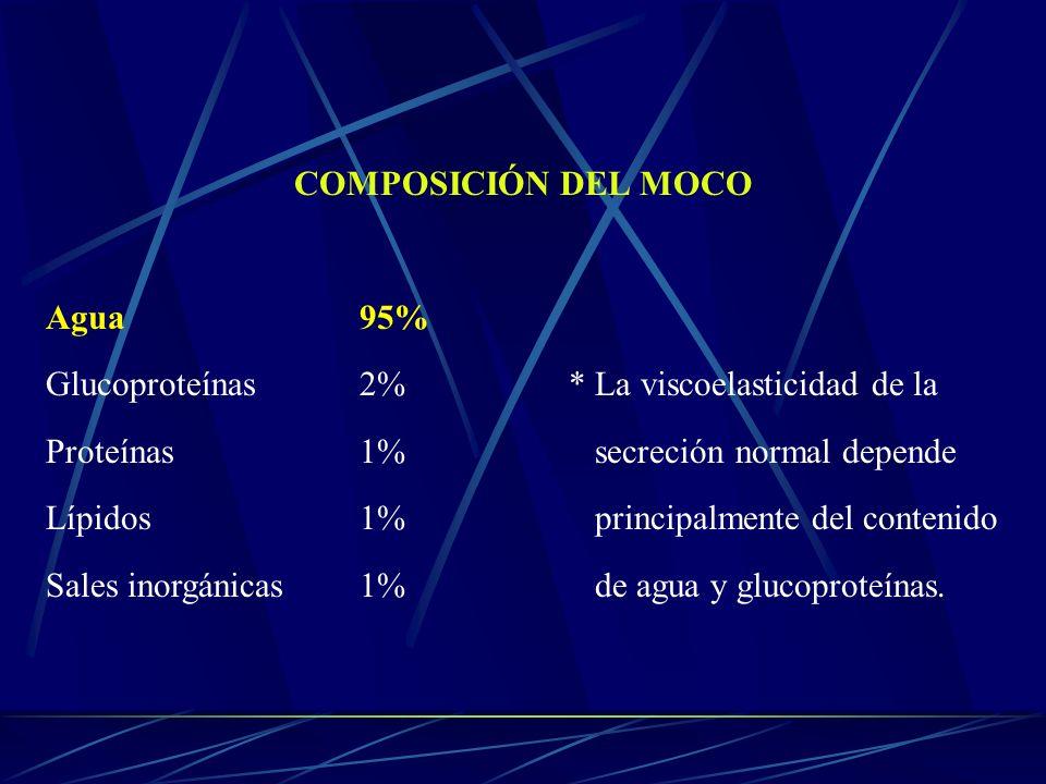 COMPOSICIÓN DEL MOCO Agua 95% Glucoproteínas 2% * La viscoelasticidad de la. Proteínas 1% secreción normal depende.