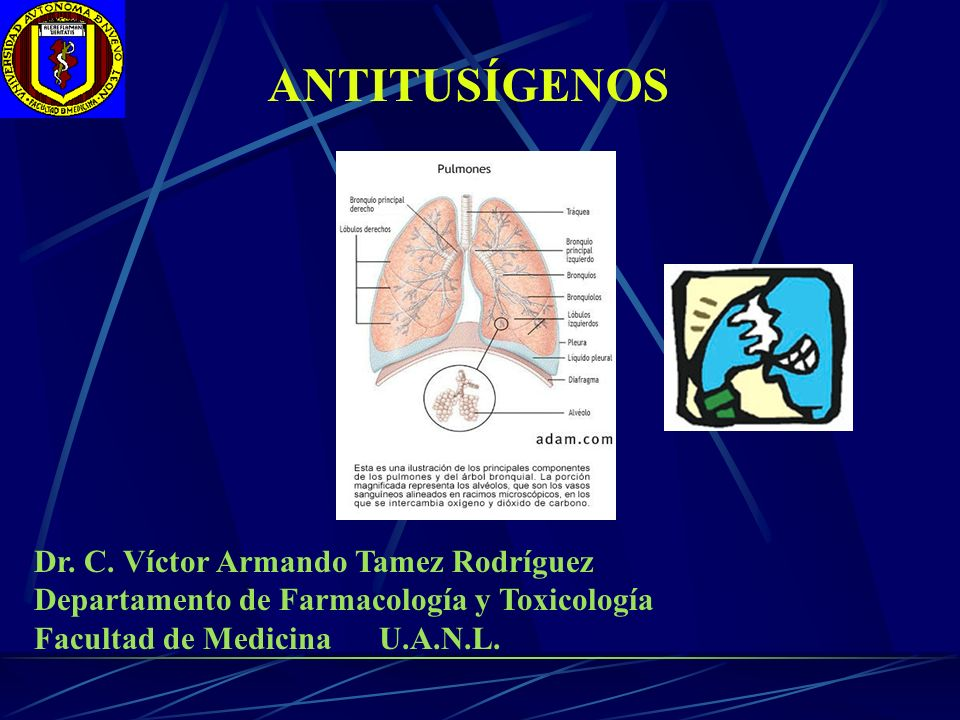 ANTITUSÍGENOS Dr. C. Víctor Armando Tamez Rodríguez