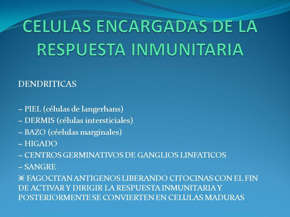 CELULAS ENCARGADAS DE LA RESPUESTA INMUNITARIA