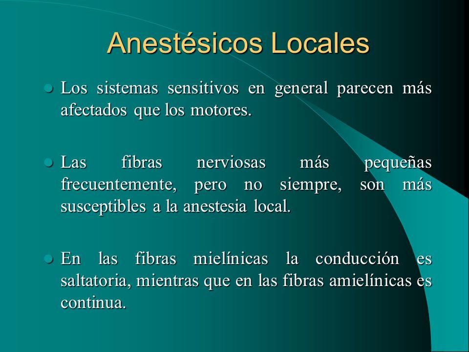 Anestésicos Locales Los sistemas sensitivos en general parecen más afectados que los motores.