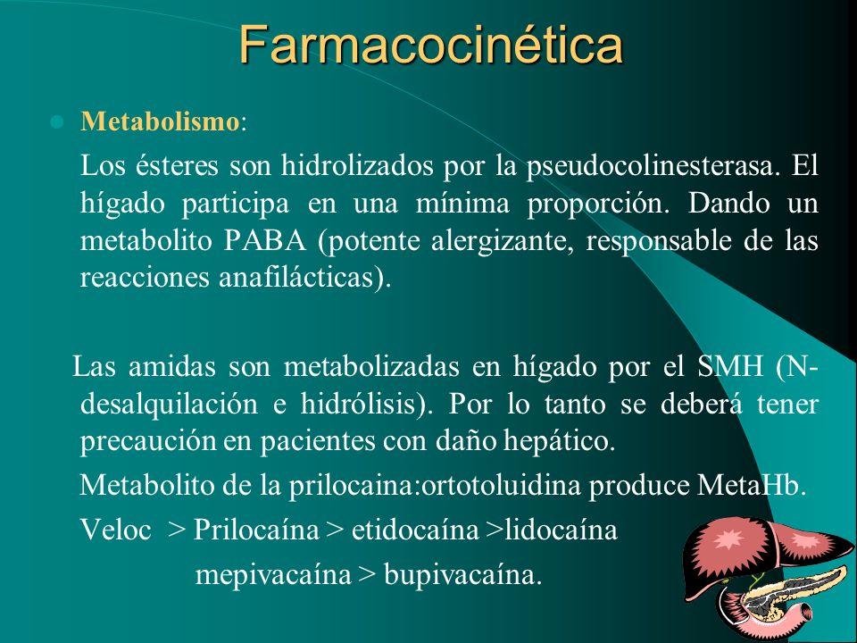 Farmacocinética Metabolismo: