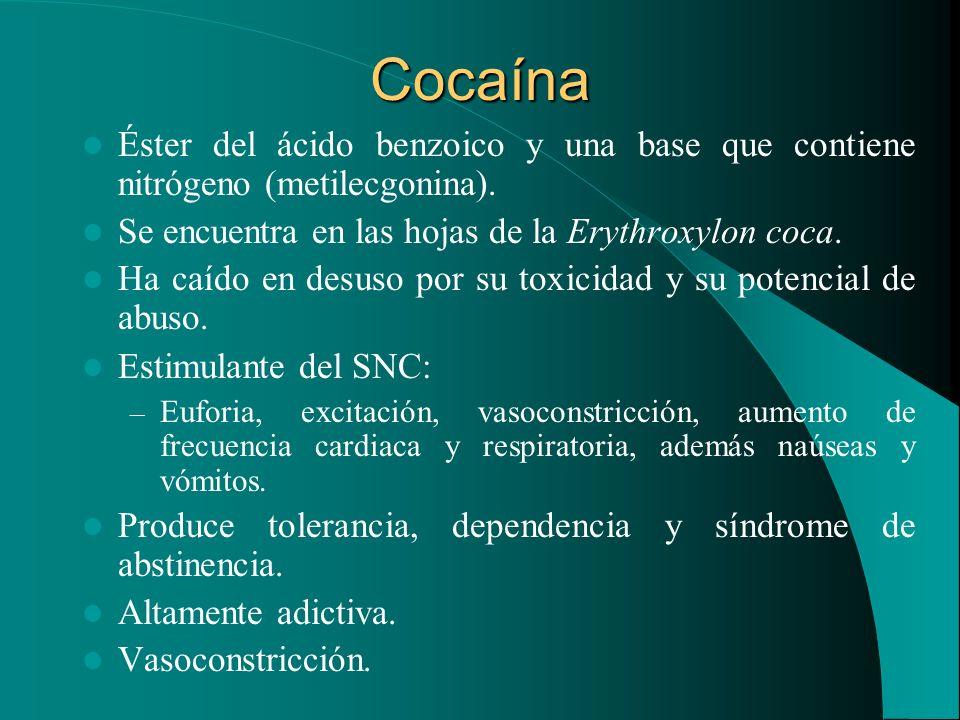 Cocaína Éster del ácido benzoico y una base que contiene nitrógeno (metilecgonina). Se encuentra en las hojas de la Erythroxylon coca.