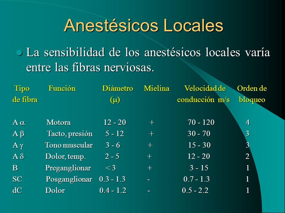 Anestésicos Locales La sensibilidad de los anestésicos locales varía entre las fibras nerviosas.