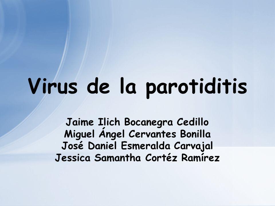 Virus de la parotiditis