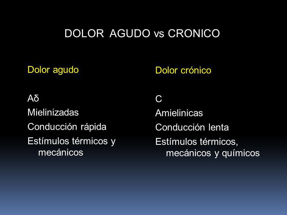 DOLOR AGUDO vs CRONICO Dolor agudo Dolor crónico Aδ C Mielinizadas