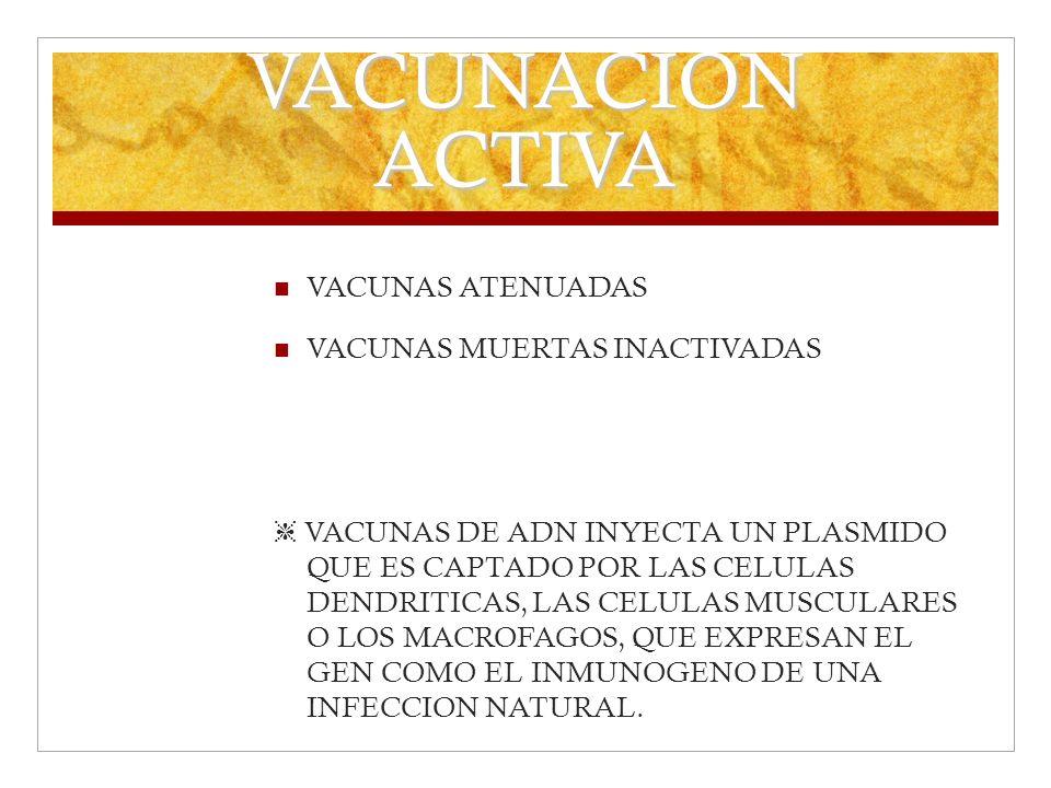 VACUNACION ACTIVA VACUNAS ATENUADAS VACUNAS MUERTAS INACTIVADAS