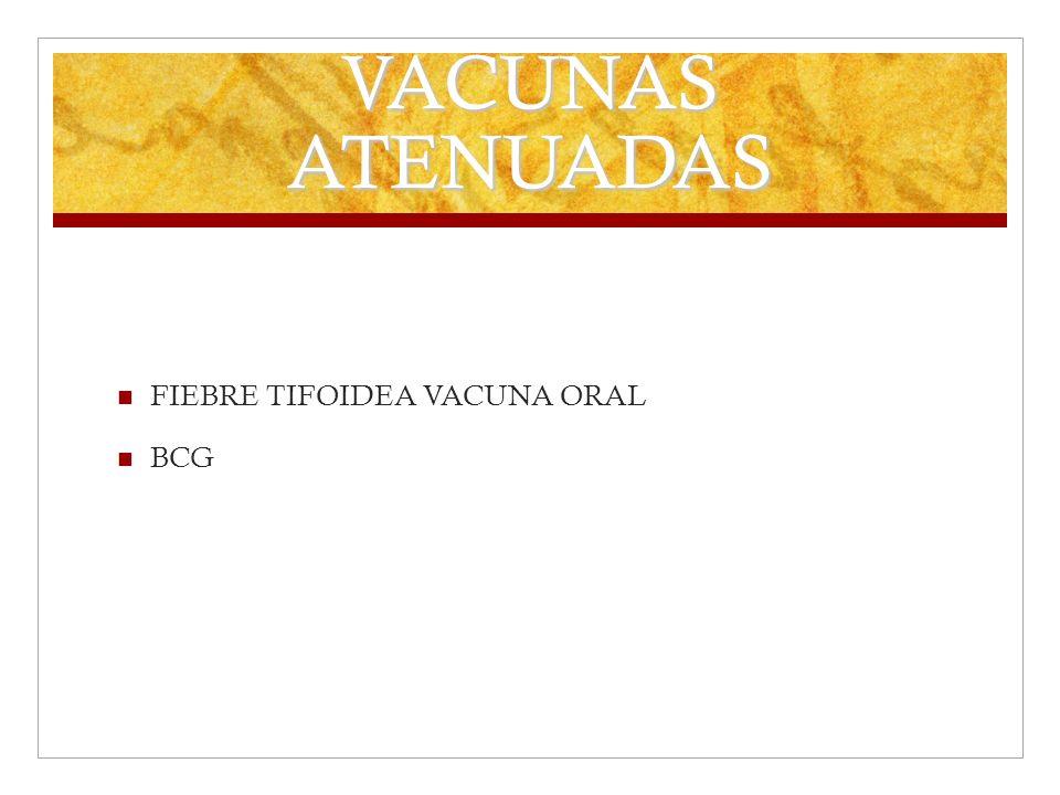 VACUNAS ATENUADAS FIEBRE TIFOIDEA VACUNA ORAL BCG