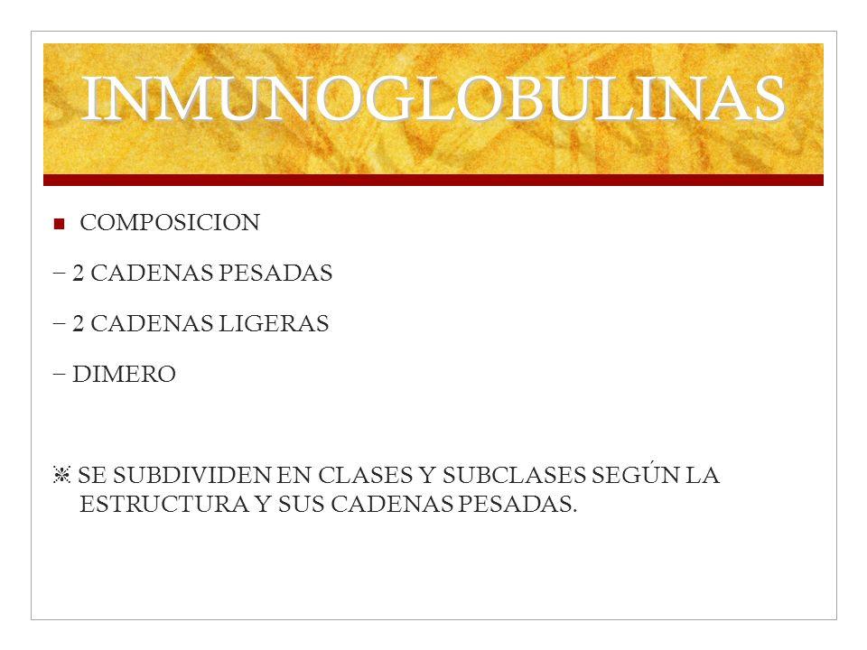 INMUNOGLOBULINAS COMPOSICION − 2 CADENAS PESADAS − 2 CADENAS LIGERAS