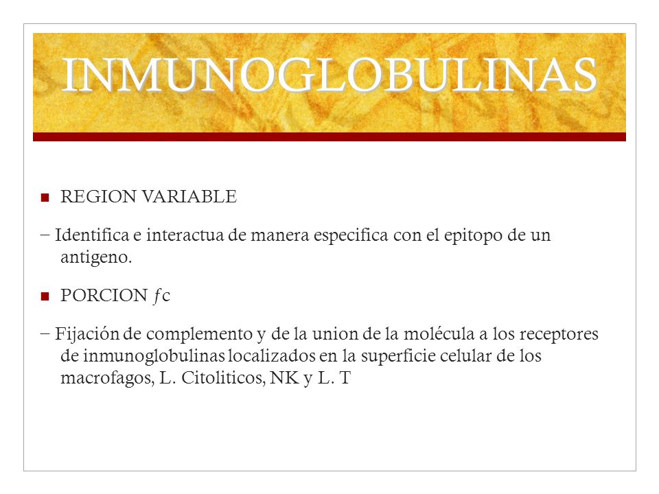 INMUNOGLOBULINAS REGION VARIABLE