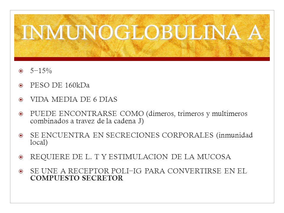 INMUNOGLOBULINA A 5−15% PESO DE 160kDa VIDA MEDIA DE 6 DIAS