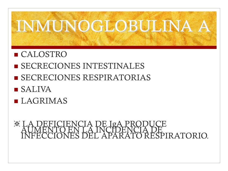 INMUNOGLOBULINA A CALOSTRO SECRECIONES INTESTINALES