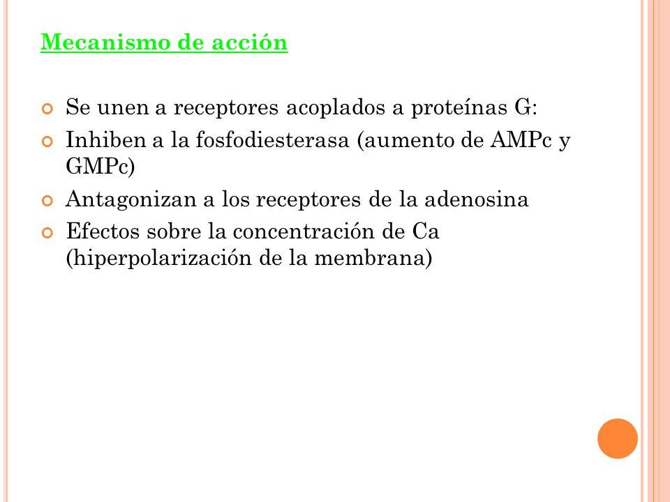 Mecanismo de acción Se unen a receptores acoplados a proteínas G: Inhiben a la fosfodiesterasa (aumento de AMPc y GMPc)
