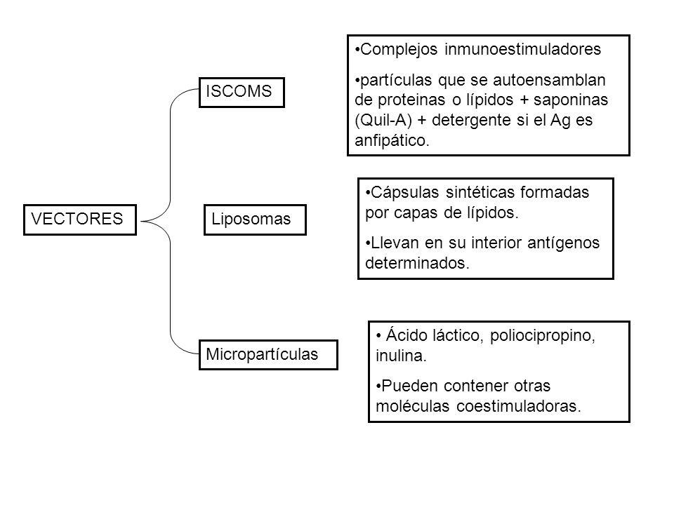 Complejos inmunoestimuladores
