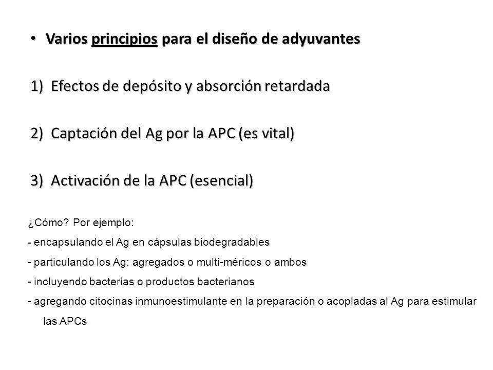 Varios principios para el diseño de adyuvantes