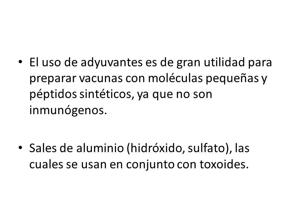 El uso de adyuvantes es de gran utilidad para preparar vacunas con moléculas pequeñas y péptidos sintéticos, ya que no son inmunógenos.