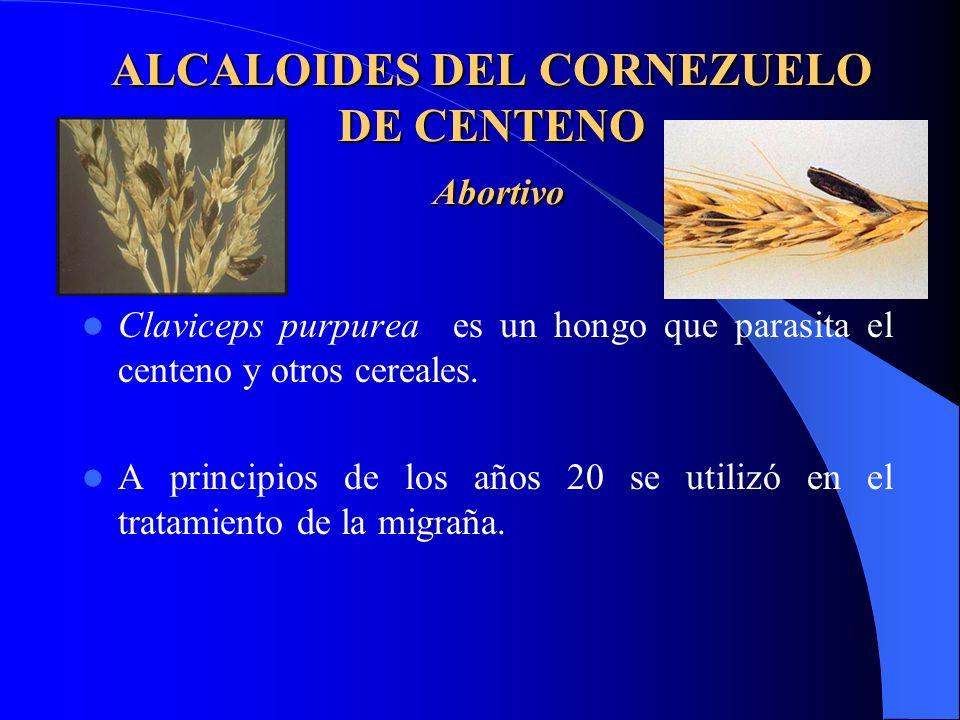 ALCALOIDES DEL CORNEZUELO DE CENTENO Abortivo