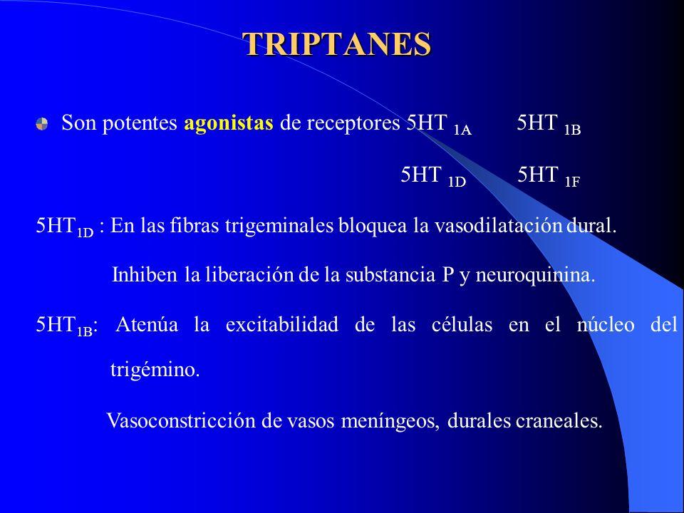 TRIPTANES Son potentes agonistas de receptores 5HT 1A 5HT 1B