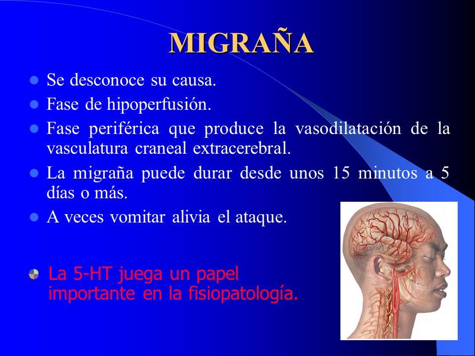 MIGRAÑA Se desconoce su causa. Fase de hipoperfusión.