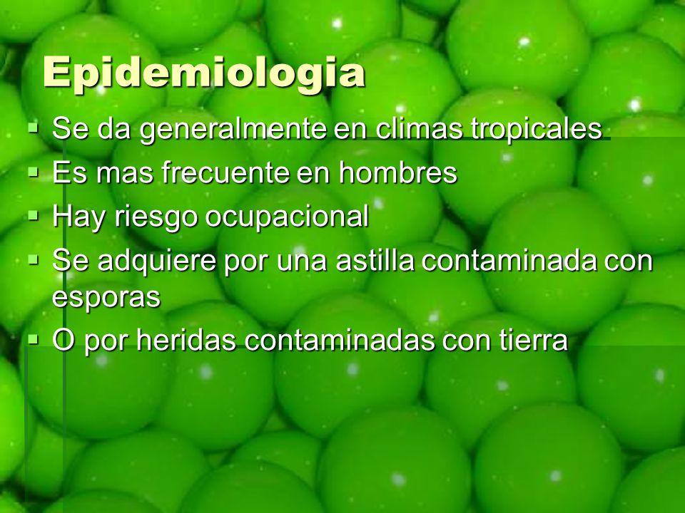 Epidemiologia Se da generalmente en climas tropicales