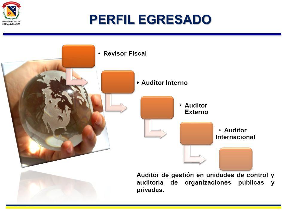 Auditor Internacional