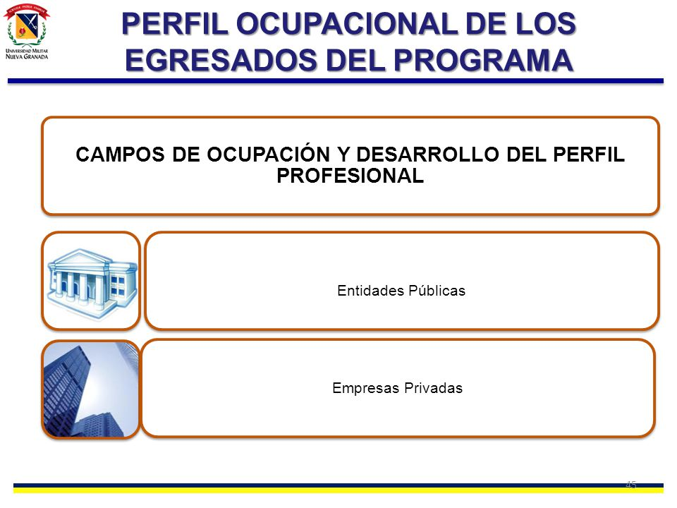 PERFIL OCUPACIONAL DE LOS EGRESADOS DEL PROGRAMA