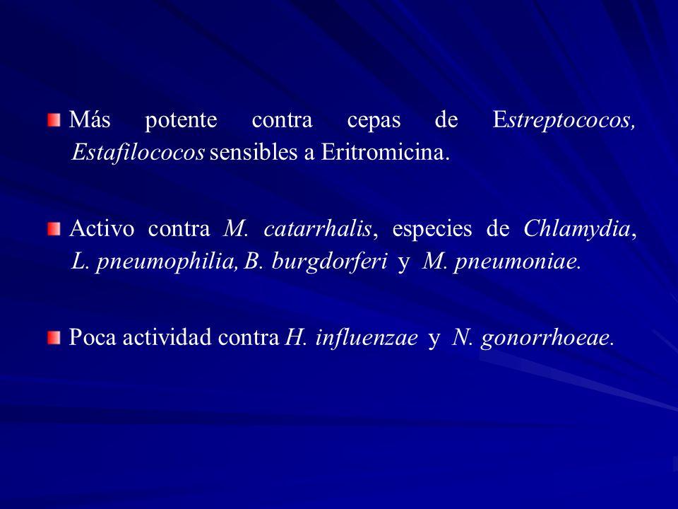 Más potente contra cepas de Estreptococos, Estafilococos sensibles a Eritromicina.