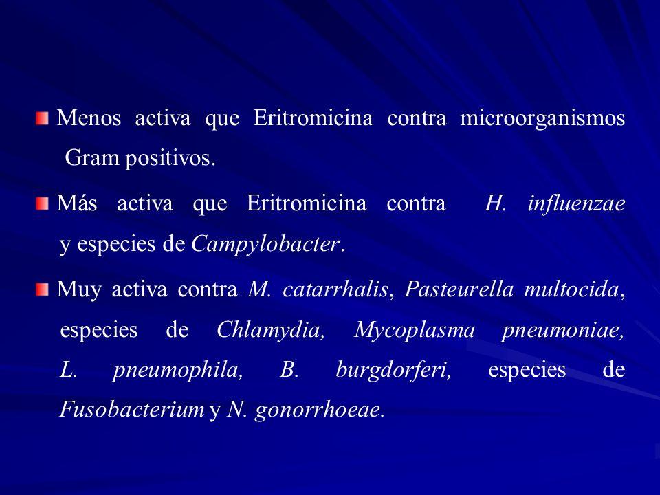 Menos activa que Eritromicina contra microorganismos Gram positivos.