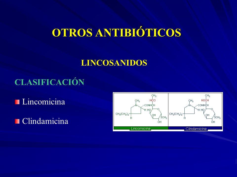 LINCOSANIDOS CLASIFICACIÓN Lincomicina Clindamicina
