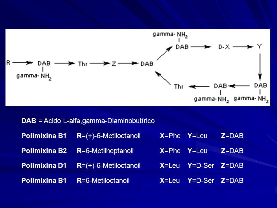 DAB = Acido L-alfa,gamma-Diaminobutírico