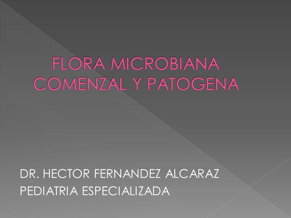 FLORA MICROBIANA COMENZAL Y PATOGENA
