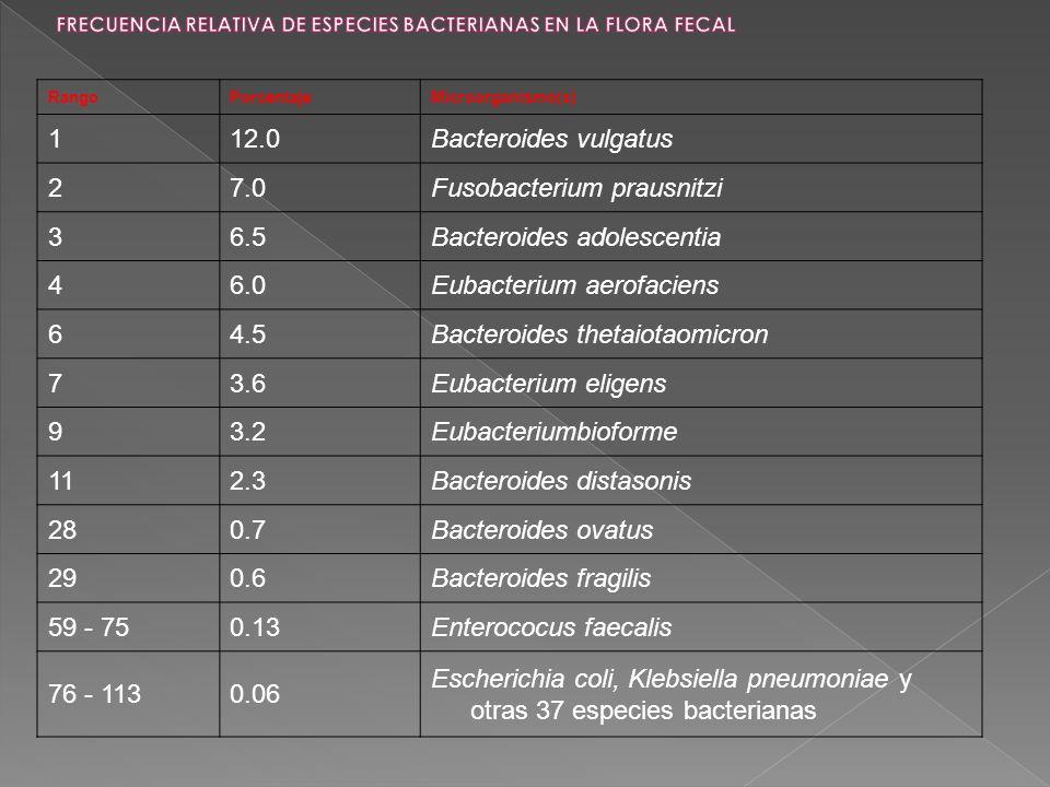 FRECUENCIA RELATIVA DE ESPECIES BACTERIANAS EN LA FLORA FECAL