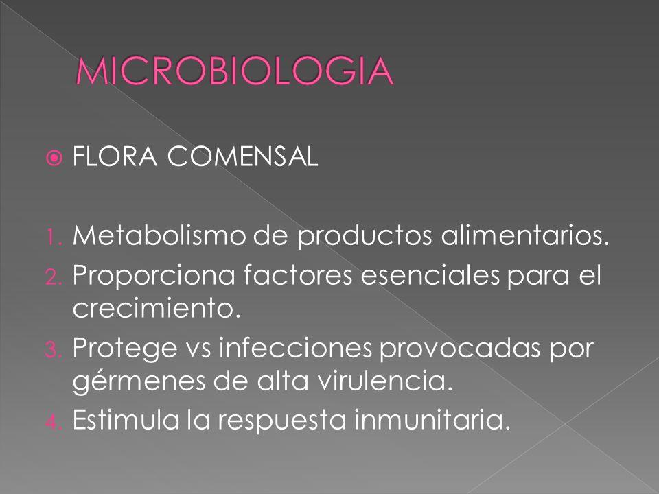MICROBIOLOGIA FLORA COMENSAL Metabolismo de productos alimentarios.
