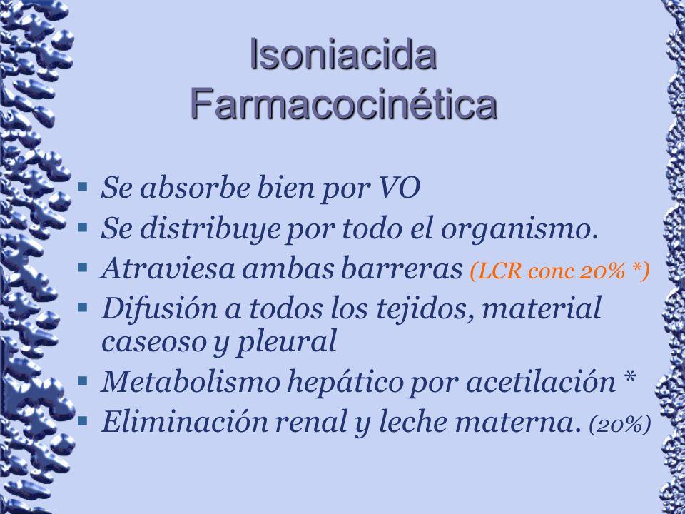 Isoniacida Farmacocinética
