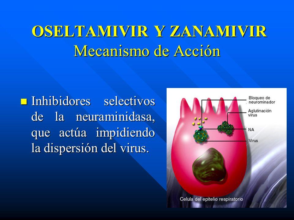 OSELTAMIVIR Y ZANAMIVIR Mecanismo de Acción