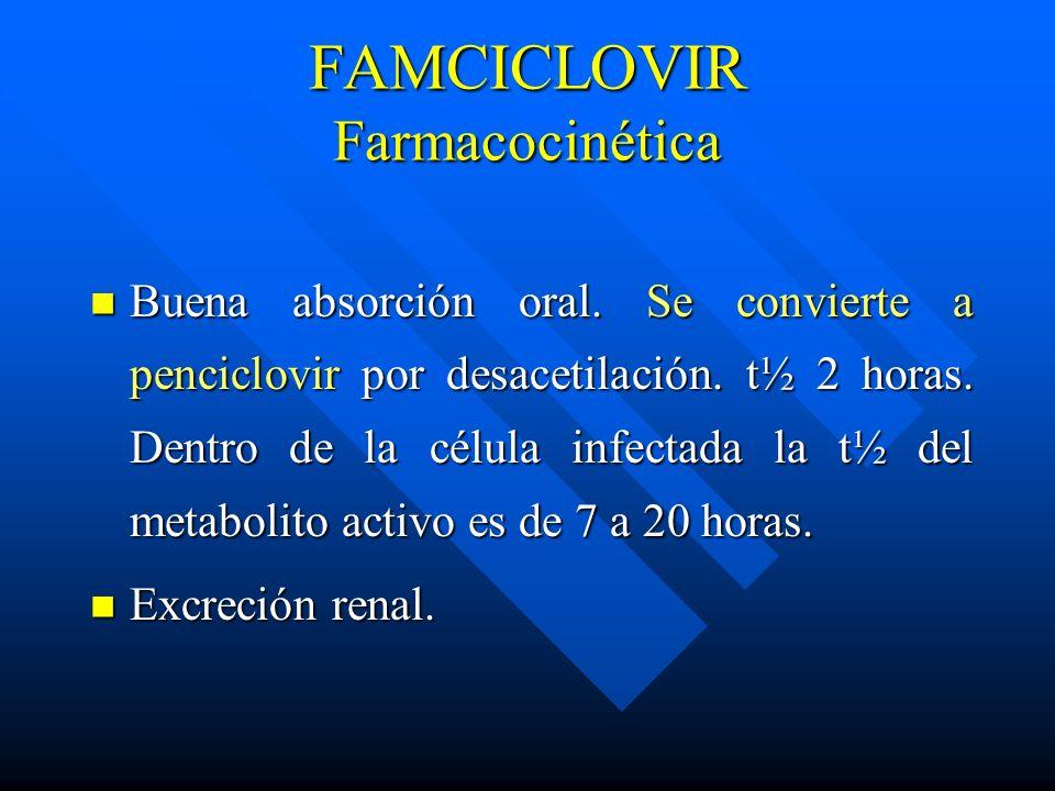 FAMCICLOVIR Farmacocinética