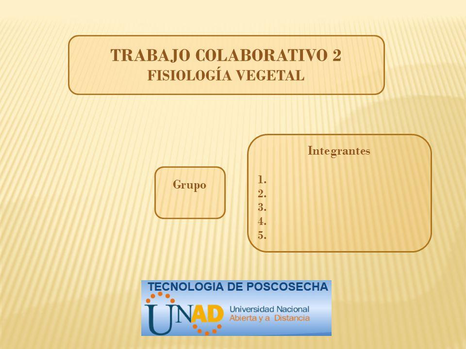 TRABAJO COLABORATIVO 2 FISIOLOGÍA VEGETAL Integrantes Grupo 1. 2. 3.