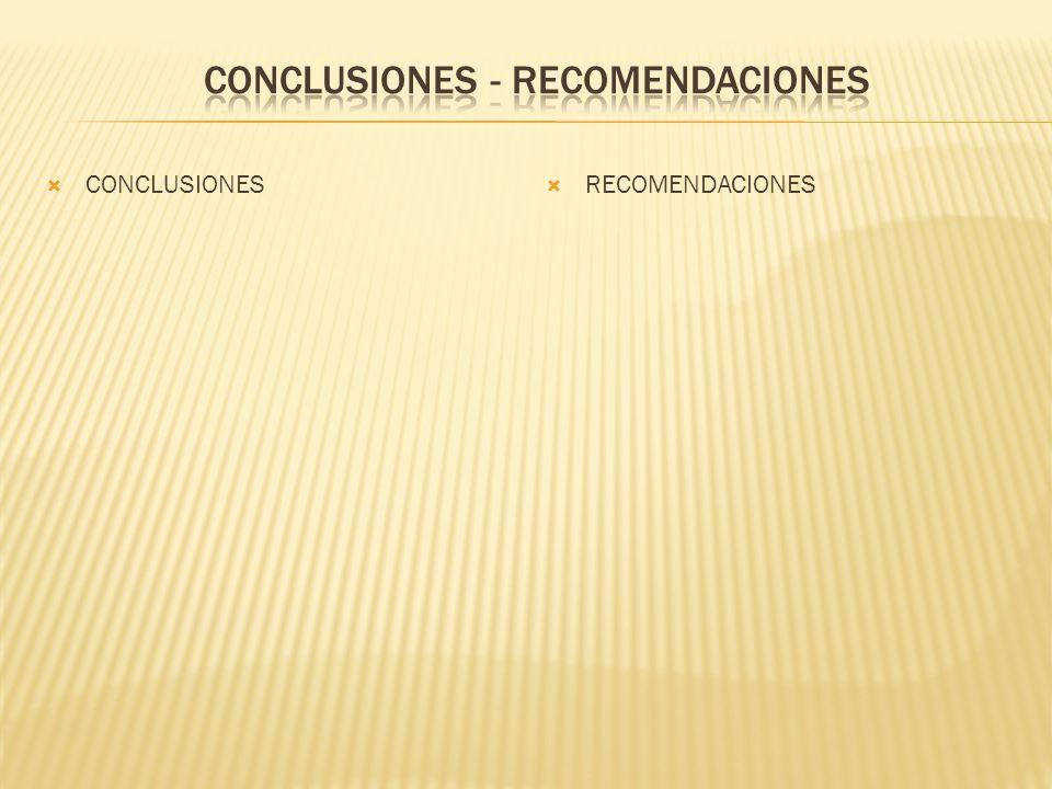 CONCLUSIONES - RECOMENDACIONES
