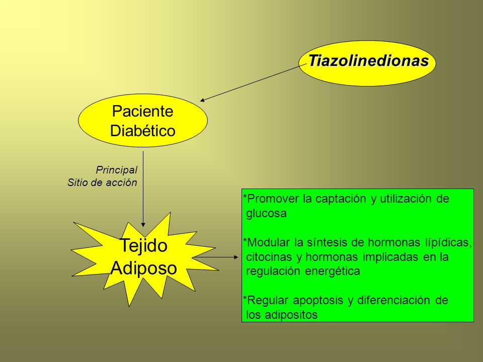 Tejido Adiposo Tiazolinedionas Paciente Diabético