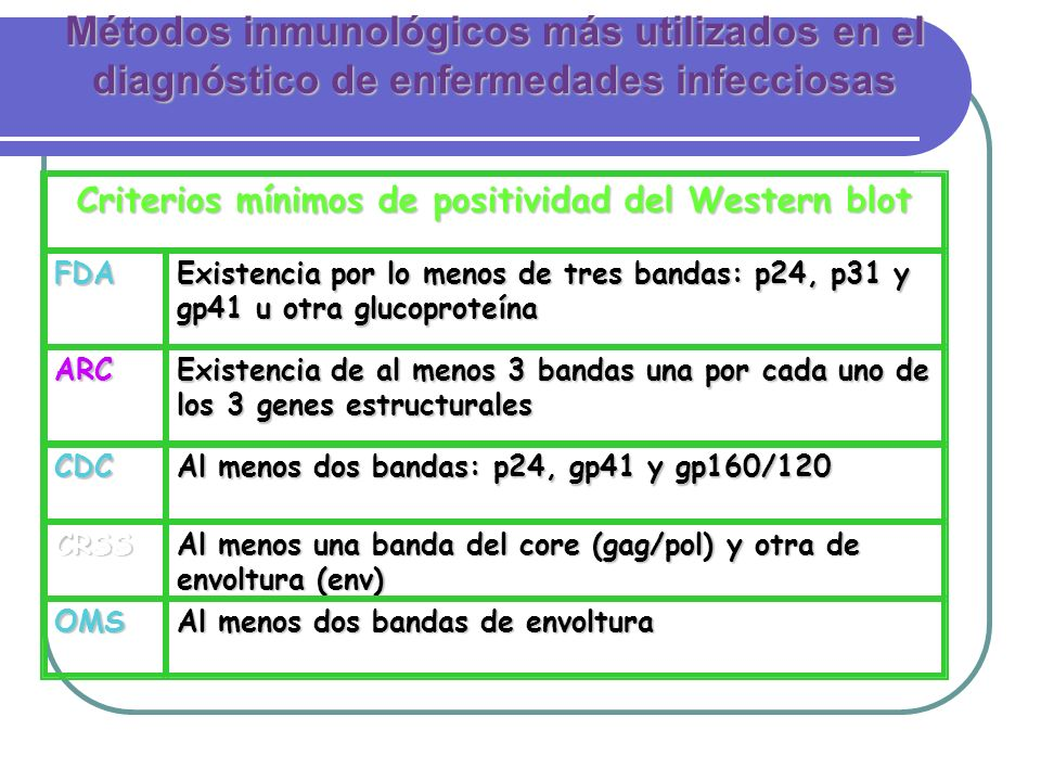 Criterios mínimos de positividad del Western blot