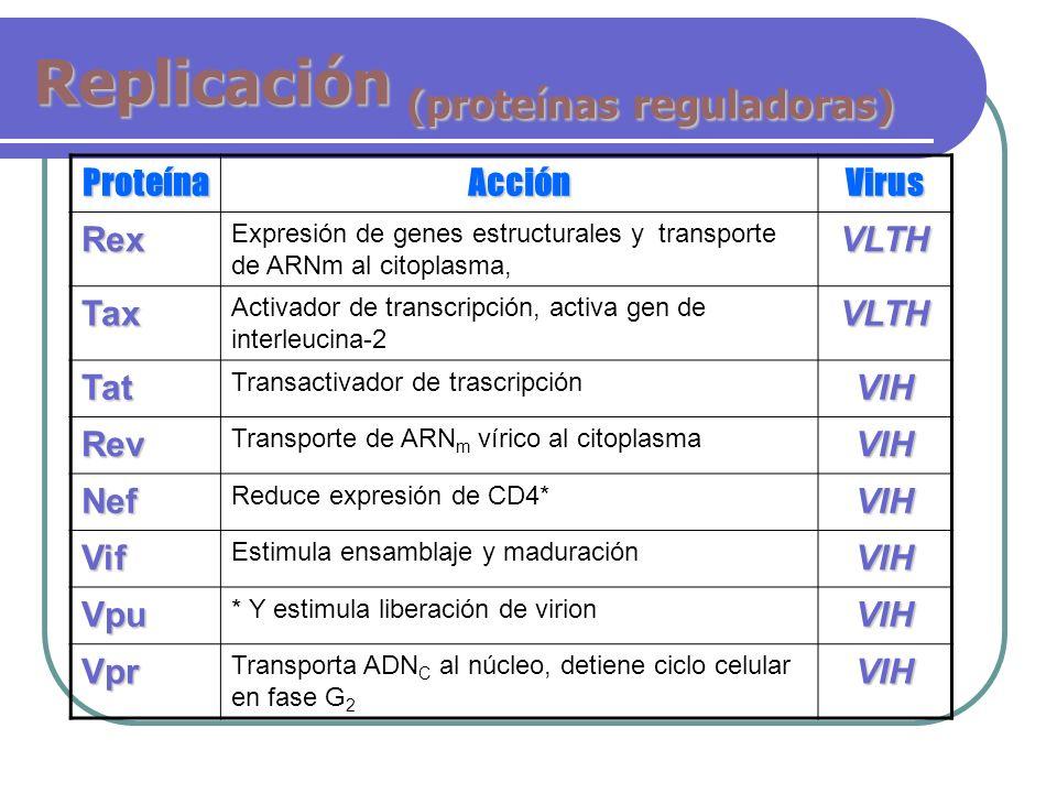 Replicación (proteínas reguladoras)