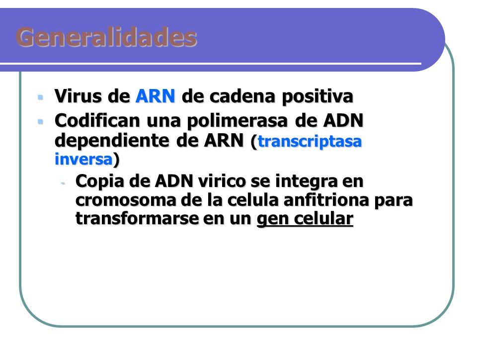 Generalidades Virus de ARN de cadena positiva