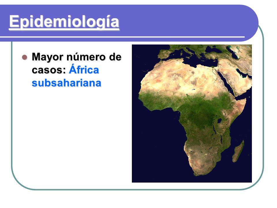 Epidemiología Mayor número de casos: África subsahariana