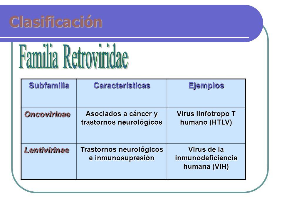 Clasificación Familia Retroviridae Subfamilia Características Ejemplos