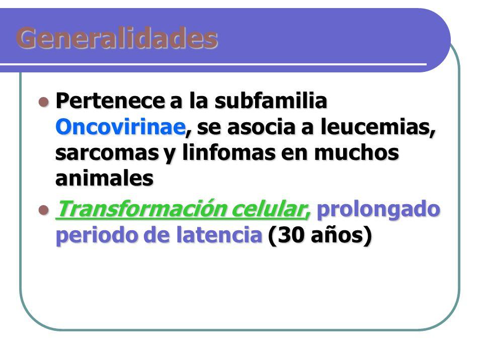 GeneralidadesPertenece a la subfamilia Oncovirinae, se asocia a leucemias, sarcomas y linfomas en muchos animales.